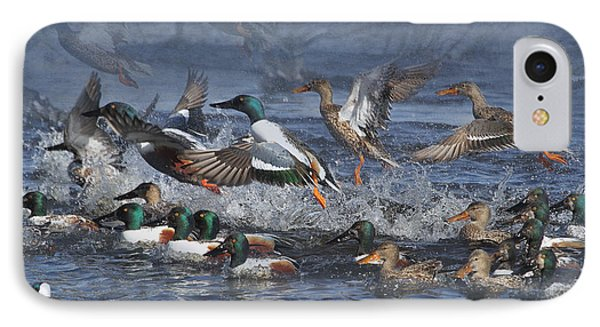 Duck Frenzy IPhone Case by Angie Vogel