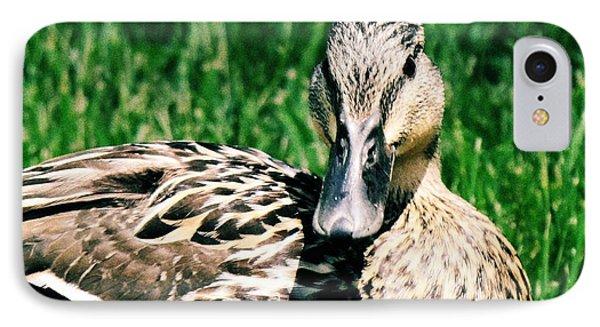 Duck IPhone Case by Lisa Brandel