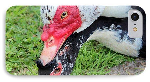 Duck Love Phone Case by Cynthia Guinn