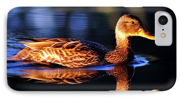 Duck On A River With Refletion IPhone Case by Todd Soderstrom