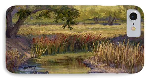Duck Pond IPhone Case by Jane Thorpe