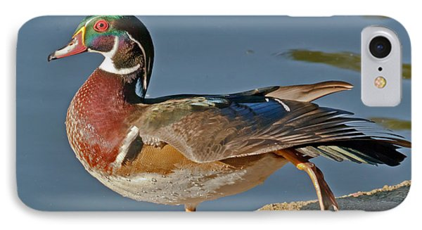 IPhone Case featuring the photograph Duck Yoga by Kate Brown