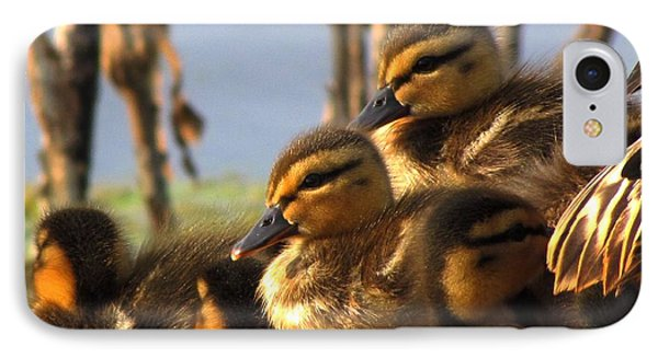 Ducklings IPhone Case