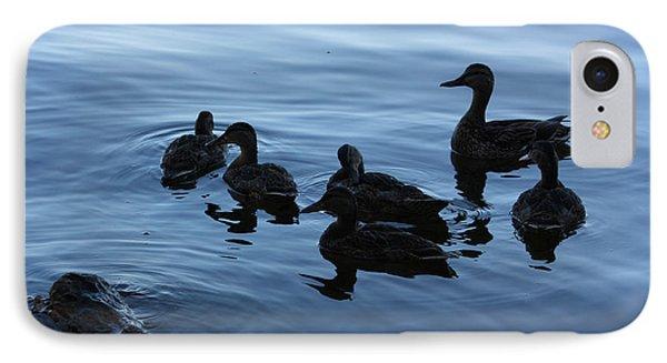 Ducks At Dusk IPhone Case