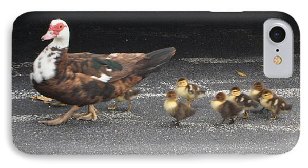 Ducks Walking IPhone Case by Val Oconnor