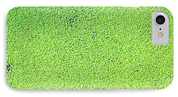 Duckweed IPhone Case