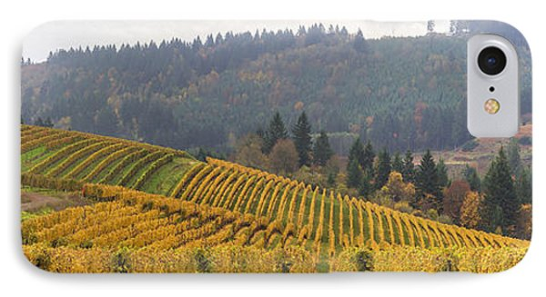 Dundee Oregon Vineyards Scenic Panorama IPhone Case by Jit Lim