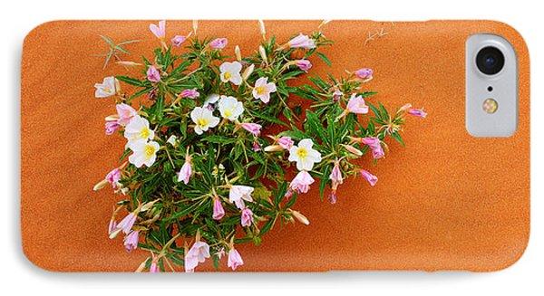 Dune Evening Primrose Flowers In Sand IPhone Case