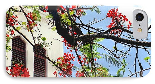 Duval Street Flame Tree IPhone Case by Valerie Reeves