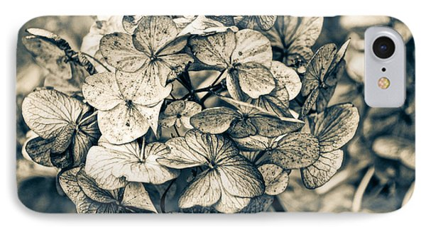IPhone Case featuring the photograph Dying Beauty Black And White by Ronda Broatch