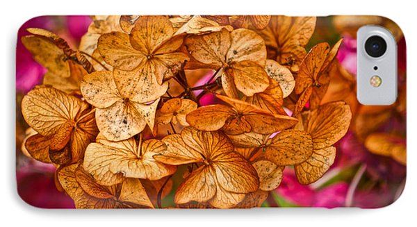 IPhone Case featuring the photograph Dying Beauty by Ronda Broatch