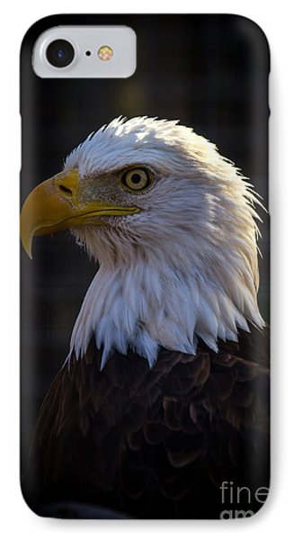 Eagle 1 IPhone Case by Jim McCain