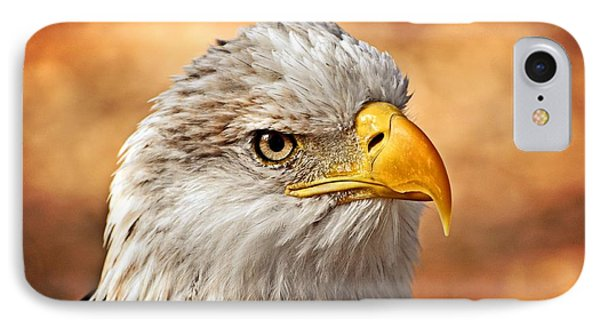 Eagle At Sunset Phone Case by Marty Koch