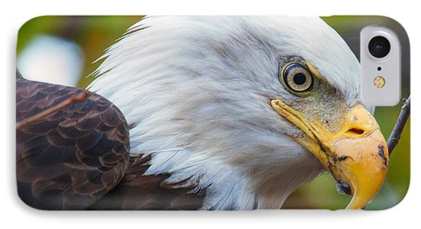 IPhone Case featuring the photograph Eagle Eye by Alan Raasch