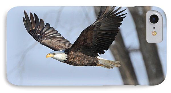 Eagle Flight IPhone Case by Coby Cooper