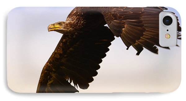 IPhone Case featuring the photograph Eagle In Flight by Nick  Biemans