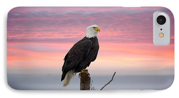 Eagle In The Mist IPhone Case by Sylvia Hart