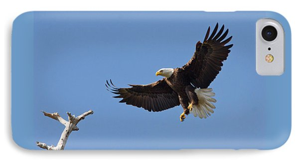 Eagle Landing 2 IPhone Case by Phil Stone