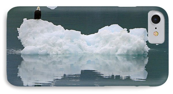 Eagle On Ice IPhone Case by Shoal Hollingsworth