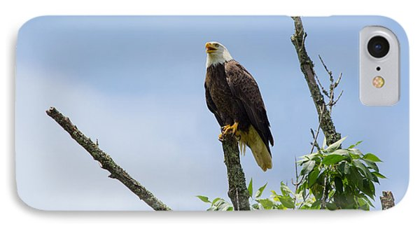 Eagle Study IPhone Case by Laurinda Bowling