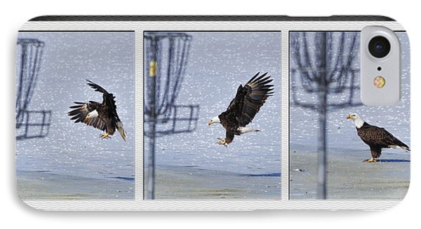 IPhone Case featuring the photograph Eagle Triptych by Rob Graham