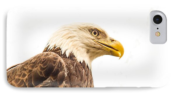 Eagle With Prey Spied IPhone Case by Douglas Barnett
