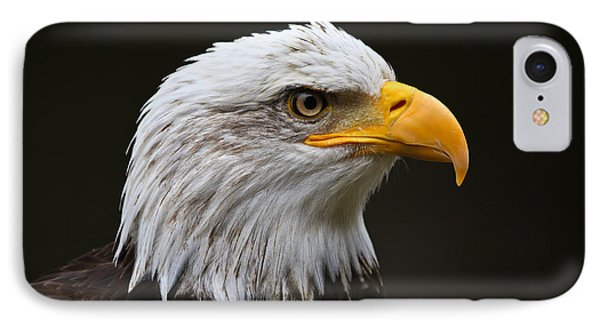 Bald Eagle Profile IPhone Case by John Roberts