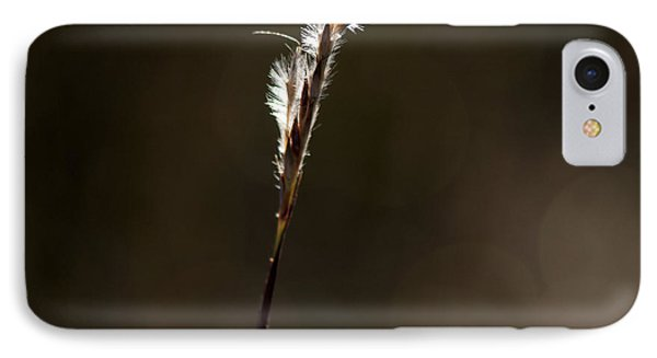 IPhone Case featuring the photograph Early Autumn by Karen Slagle