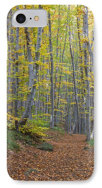 IPhone Case featuring the photograph Early Autumn Vitosha Mountain Forest Bulgaria by Jivko Nakev