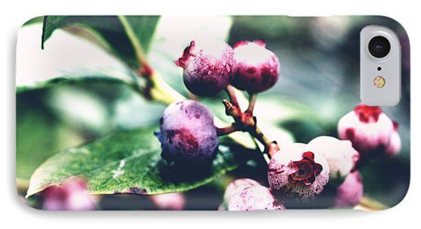 Early Blueberries IPhone Case by Rachel Mirror