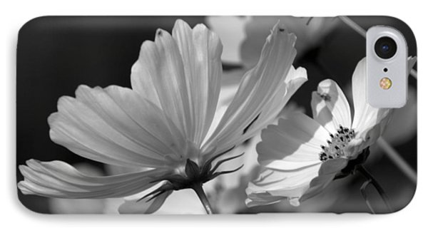 Early Dawns Light On Fall Flowers Bw 02 IPhone Case by Thomas Woolworth