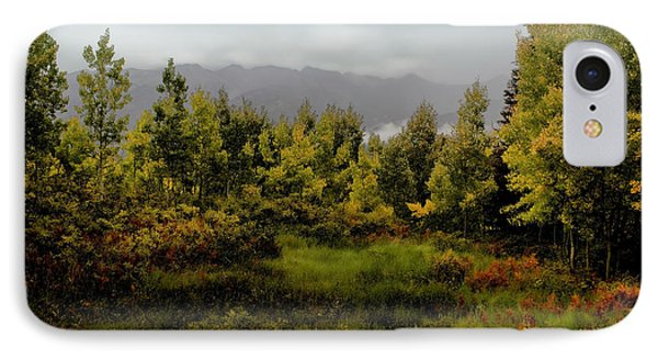 IPhone Case featuring the photograph Early Fall On Kebler Pass by Ellen Heaverlo