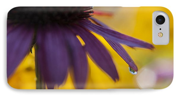 Early Morning Dew Drops IPhone Case by Amber Kresge