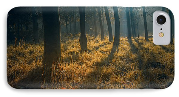 Early Morning Woodland Walk IPhone Case by Chris Fletcher