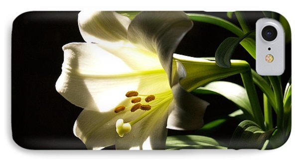 Easter Lilly IPhone Case
