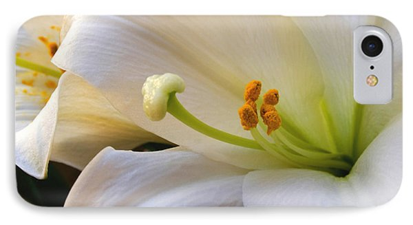 IPhone Case featuring the photograph Easter Lily by Bonnie Willis