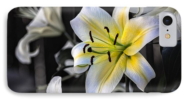 Easter Lily On Black IPhone Case