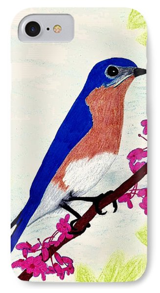 IPhone Case featuring the drawing Florida - Eastern - Blue Bird by D Hackett