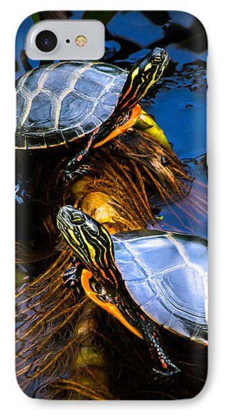 Eastern Painted Turtles Phone Case by Bob Orsillo