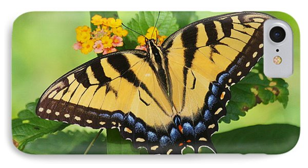 Eastern Tiger Swallowtail Butterfly IPhone Case by Myrna Bradshaw