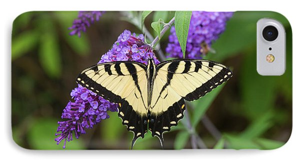 Eastern Tiger Swallowtail Butterfly IPhone Case by Richard and Susan Day