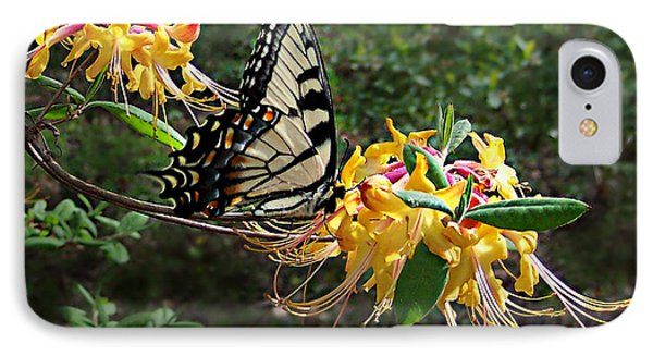 Eastern Tiger Swallowtail Butterfly IPhone Case