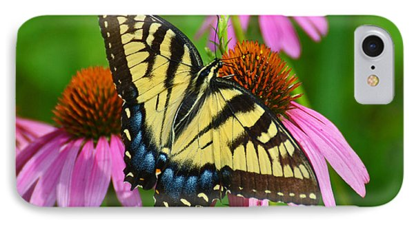 IPhone Case featuring the photograph Eastern Tiger Swallowtail Female by Rodney Campbell