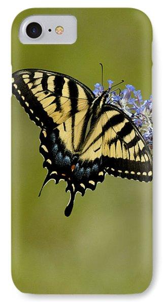 Eastern Tiger Swallowtail On Butterfly Bush Phone Case by Lara Ellis