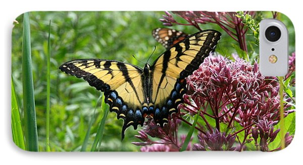 Eastern Tiger Swallowtail On Joe Pye Weed IPhone Case by Neal Eslinger