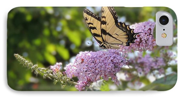 Eastern Tiger Swallowtail  IPhone Case by Teresa Schomig