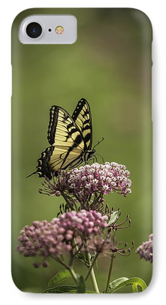 Eastern Tiger Swallowtail IPhone Case by Thomas Young
