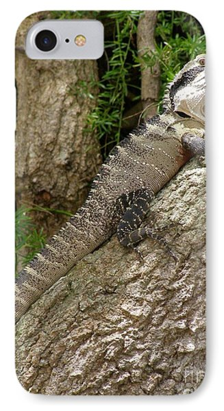 Eastern Water Dragon IPhone Case by Bev Conover