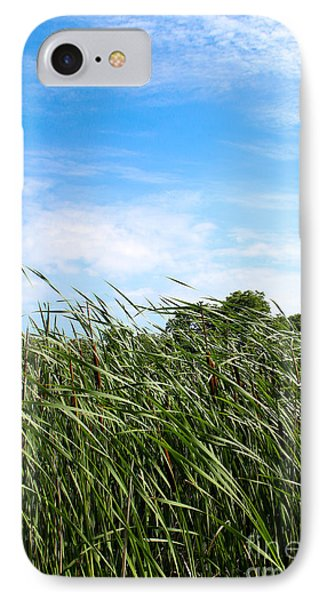 IPhone Case featuring the photograph Easy Breezy Cattails by Anita Oakley