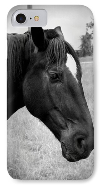 IPhone Case featuring the photograph Ebony Beauty by Laurie Perry